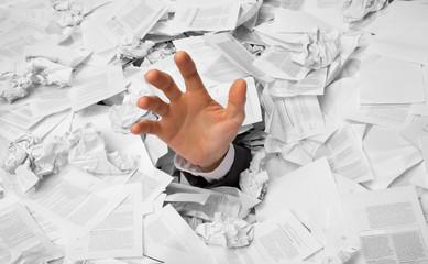 Archivierung und Digitalisierung der Unterlagen